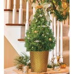 Fancy Filigree Decorated Spruce Tree